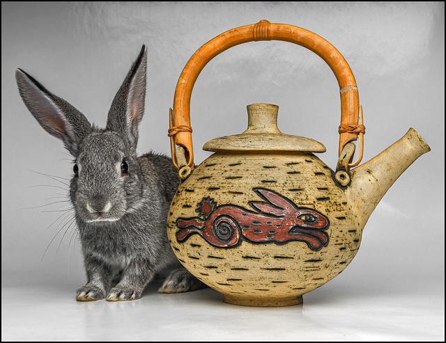 Rabbit Teapot
