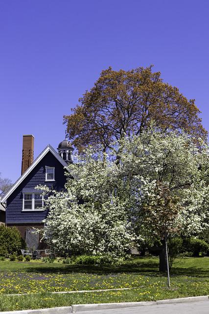 Spring Lake Michigan House