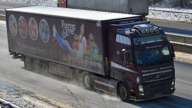 D - TTH Spedition >Forever & Ever< Volvo FH GL03