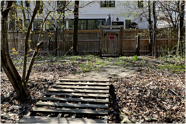 210426 Don Mills Trail South (7)