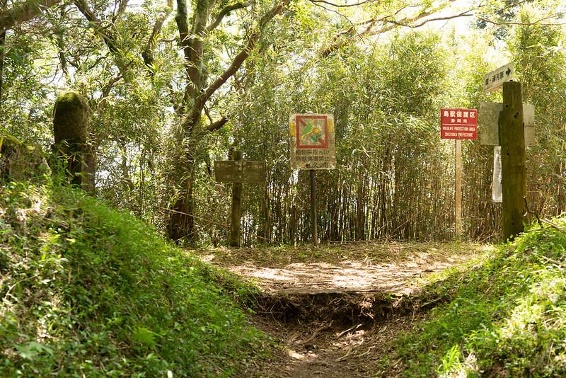 日金山ハイキングコース