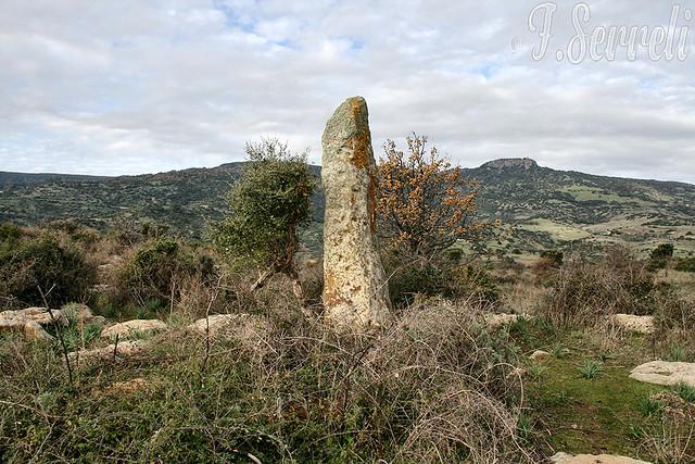 Menhir di Prabanta (Su Fruconi de Luxia Arrabiosa) - Morgongiori
