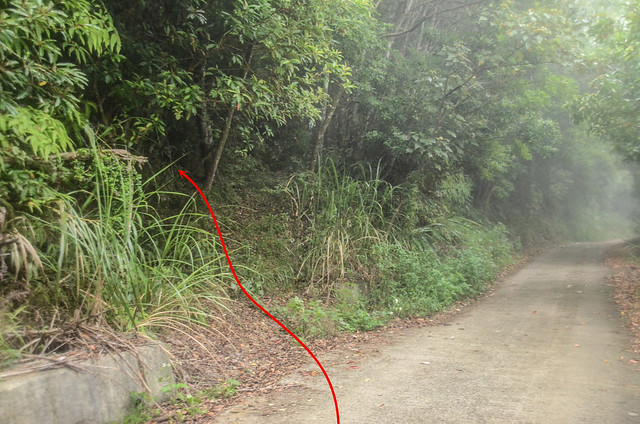 紹家牧場停車處登山口 (2)