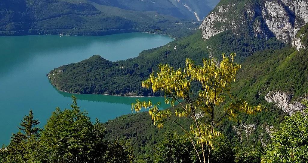 ITALIEN, Italy, Blick von oben auf den Molveno See, 79052/13663