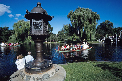 Boston Public Garden (2)