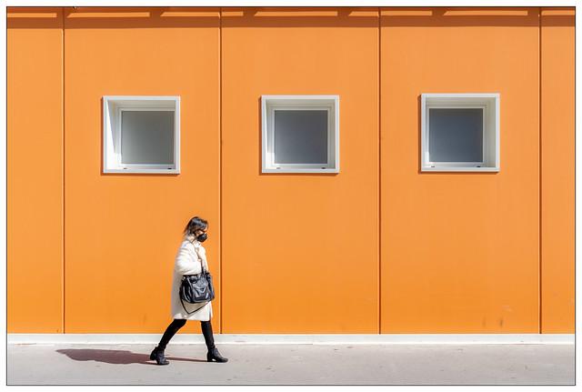 Black and White and Orange