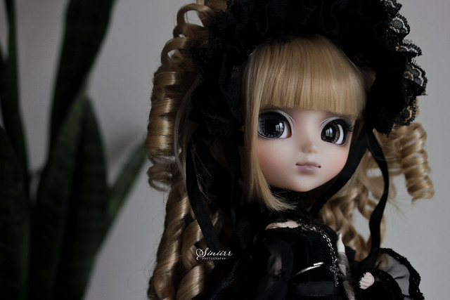 New girl, Myrtle ♥