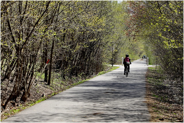 210426 Don Mills Trail South (9)