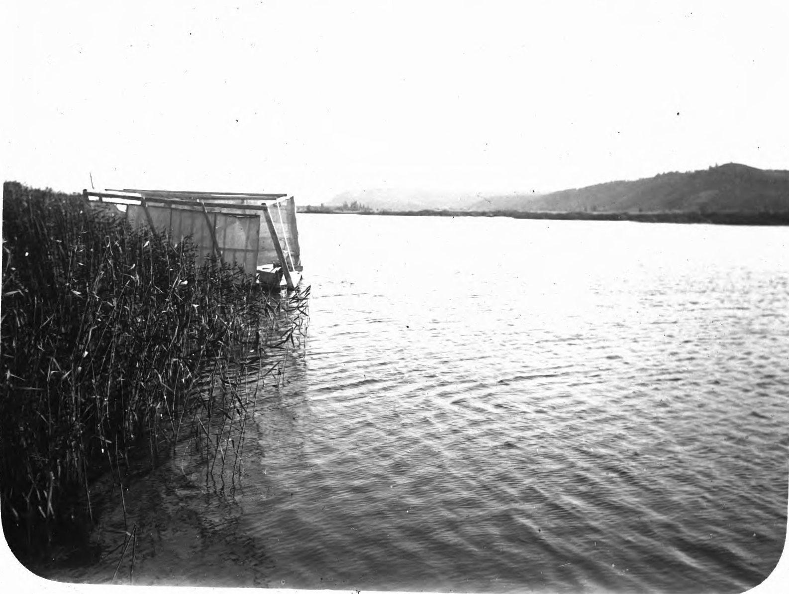 Река Лена (1)