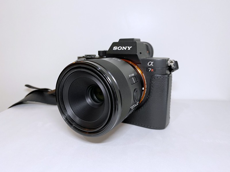 SONY FE 50mm F2.8 Macro_10
