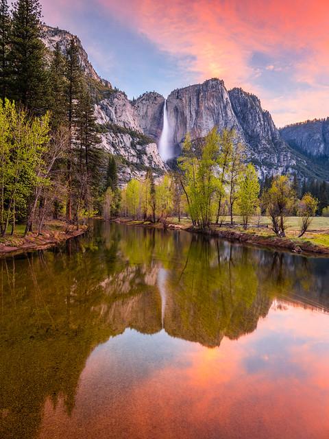 Yosemite Falls Dawn Reflections Swinging Bridge! Yosemite National Park Spring Wildflowers & Waterfalls 45EPIC Elliot McGucken Fuji GFX100 Fine Art Landscape Nature Photography! Master Medium Format Fine Art Photographer! Fujifilm GFX 100 Yosemite NPS