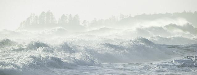 High-Key Tofino Surf
