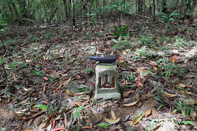 著家位山冠字補沖(46)山字森林三角點(Elev. 782 m) (4)