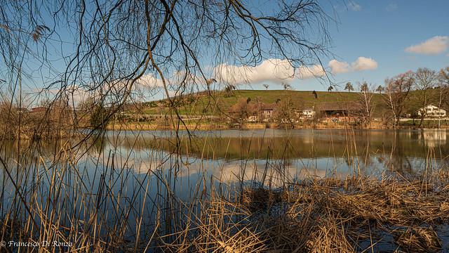 nature landscape .)2103/6901-12