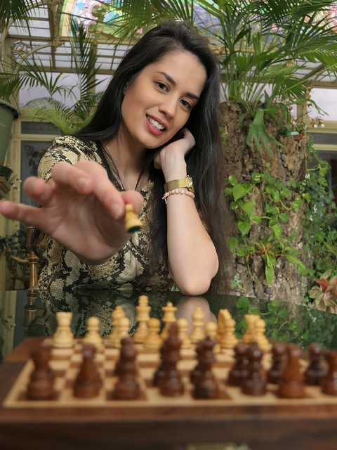 the chess player - opening move