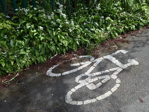 Cycle this way