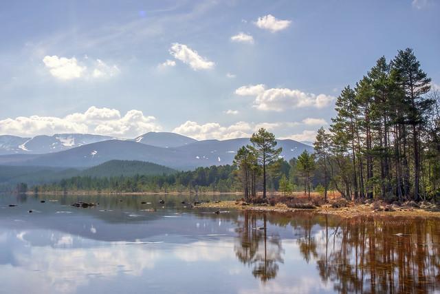 Loch Morlich...