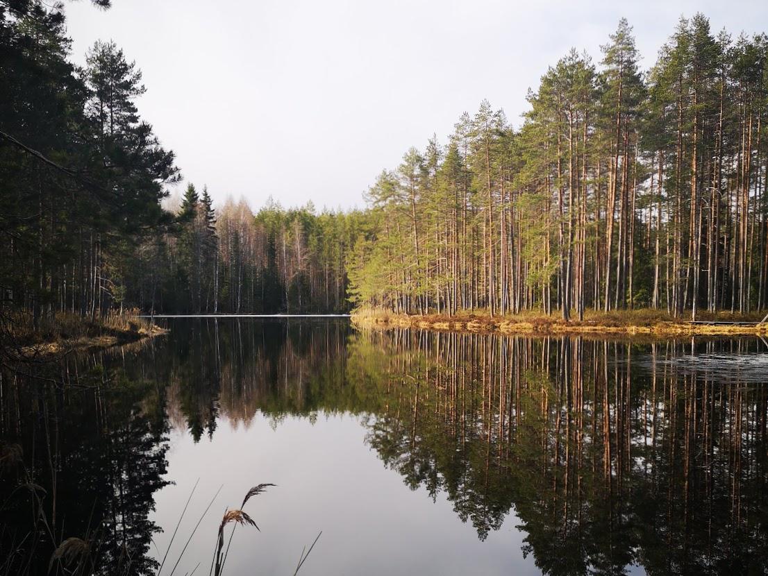 vähäkoukkujärvi evo