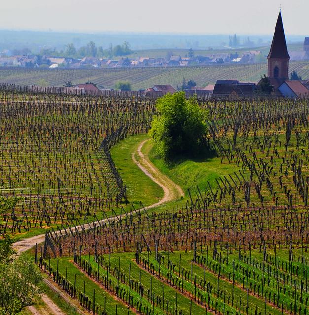 Wettolsheim