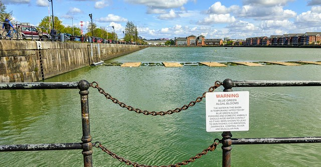 Warning of green water in PrestonDocks