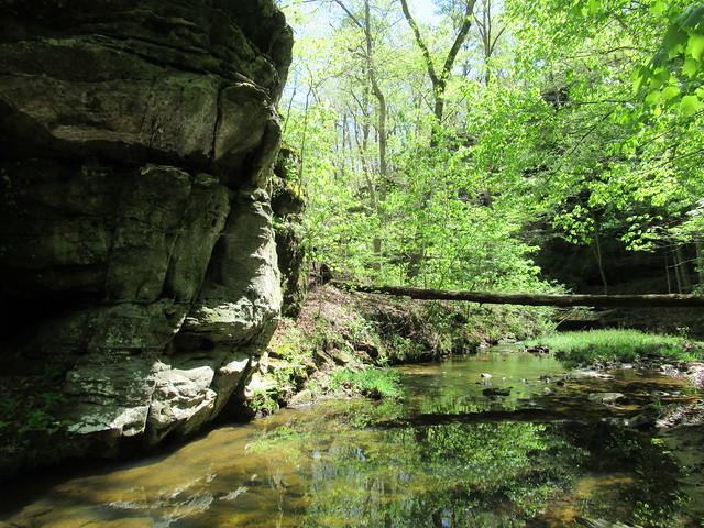 Hickory Canyon downstream