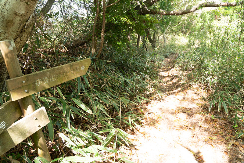 岩戸山ハイキングコース