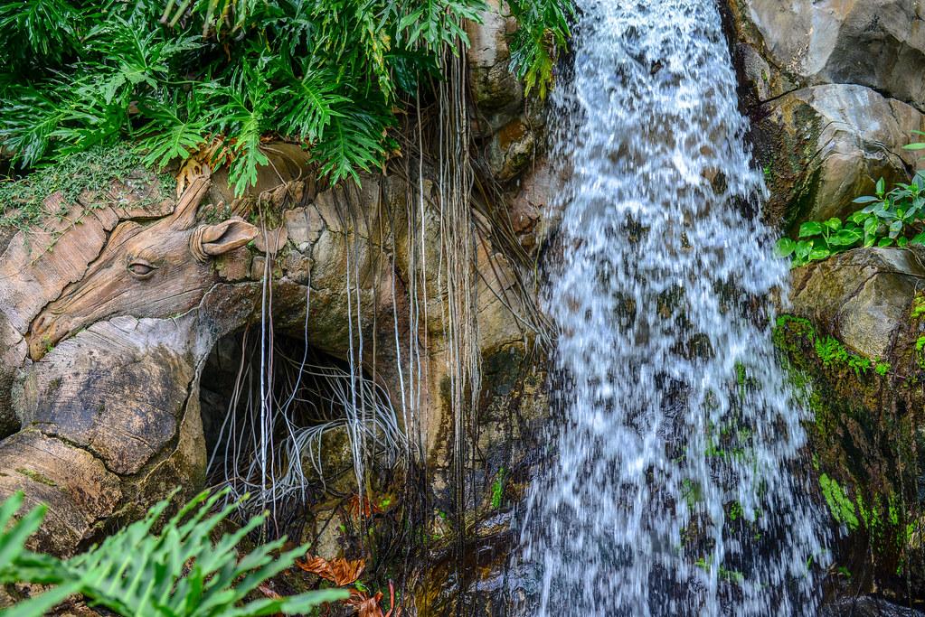 Giraffe waterfall ToL AK