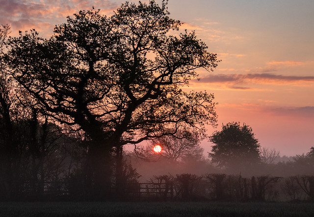 Another frosty May sunrise