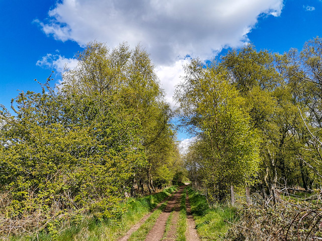 Old Ironstone Road, England