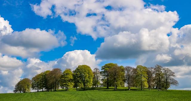 mornington - westmeath