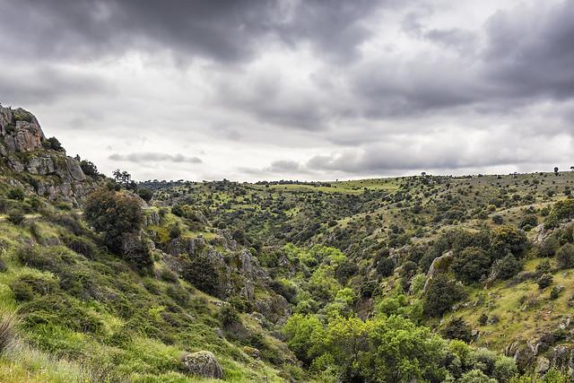 Cuenca del Manzanares