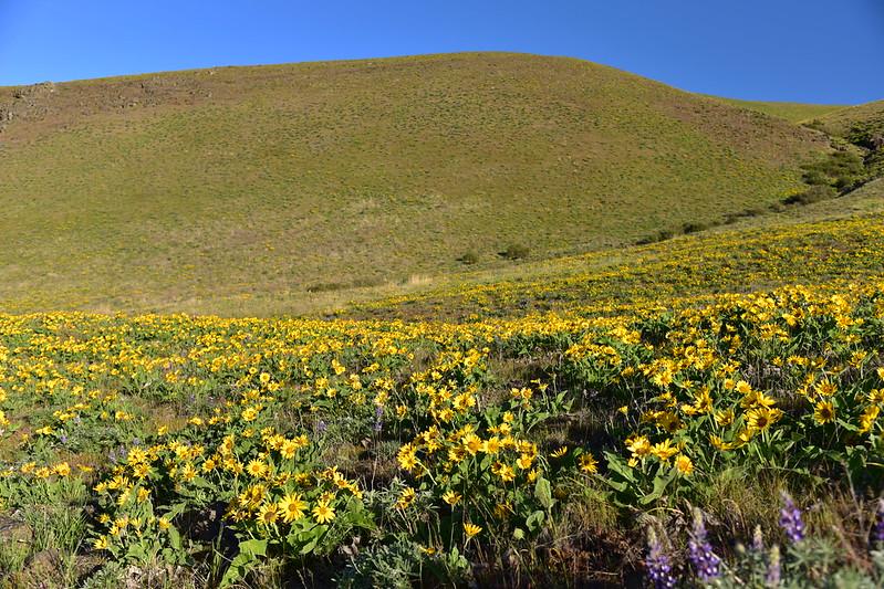 Stacker Butte hike