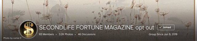 SECONDLIFE FORTUNE MAGAZINE opt out