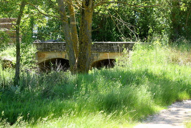 El pequeño puente...