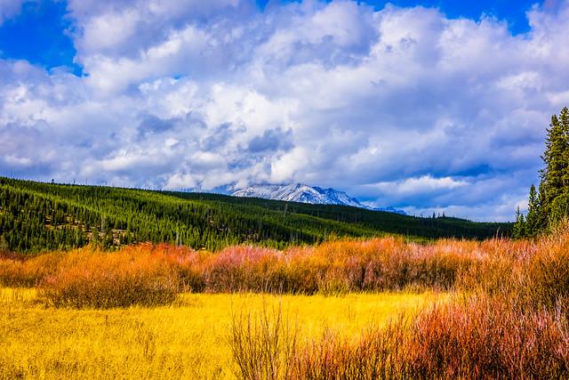 Nature's wonder - Yellowstone