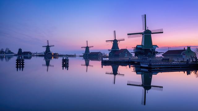 The Dutch Ones