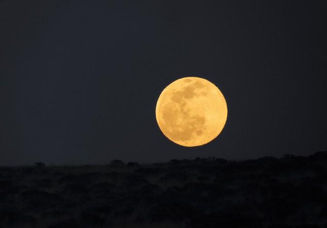 Handheld Moonrise