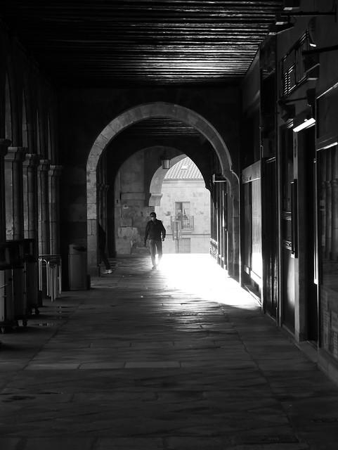 Entre la luz y las sombras