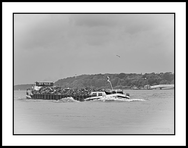 Low In The Water - BW