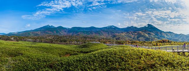 Shiretoko National Park (UNESCO World Heritage Site) - Shiretoko mountain range in background - 日本北海道知床半島-知床五湖
