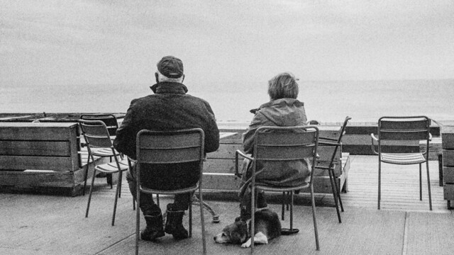 Texel Netherlands. Beach. Waiting for nothing to come. With dog. LeicaM6 Cron35V4 Ilford Delta400.