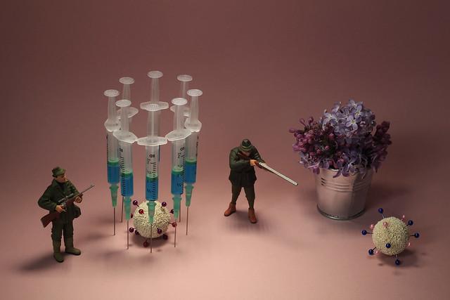 virus-safari, dead or alive ! / mort ou vif !