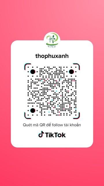 Tik Tok - Thọ Phú Xanh