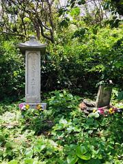 Whale grave