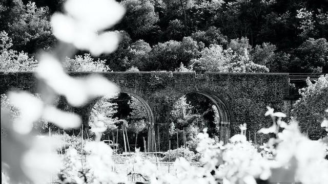 Viaduc de St jean