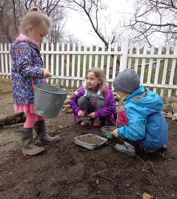 mud in the garden