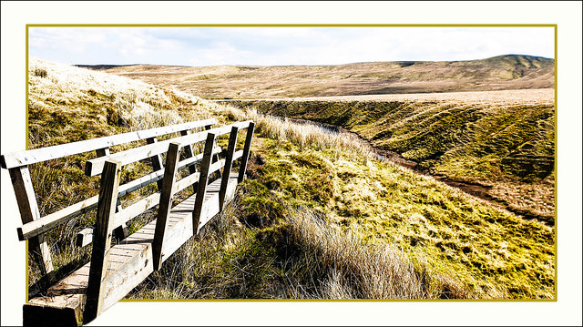 Come and walk on the wild moors