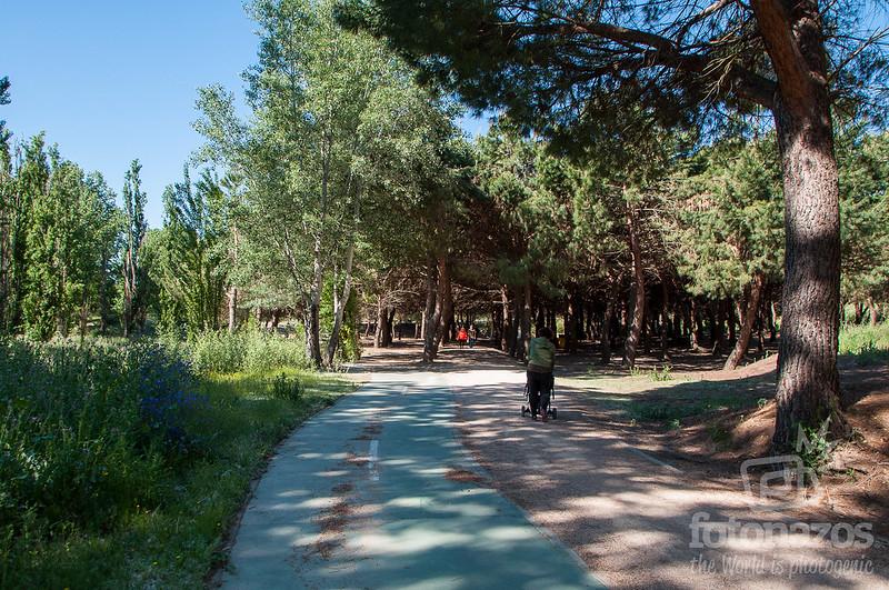 Ruta por los Molinos de Arroyomolinos