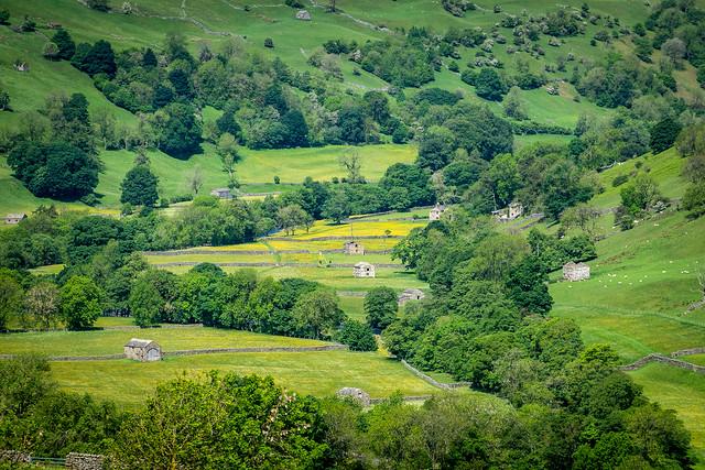 Swaledale in June, Yorkshire Dales