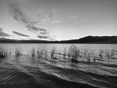 Bridgeport Reservoir, CA
